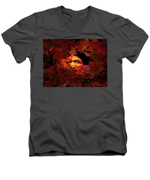 Autumn Sun Men's V-Neck T-Shirt