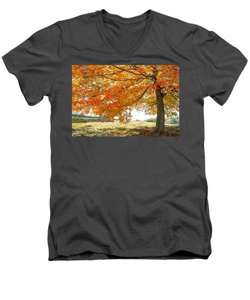 Autumn Tree - 2 Men's V-Neck T-Shirt