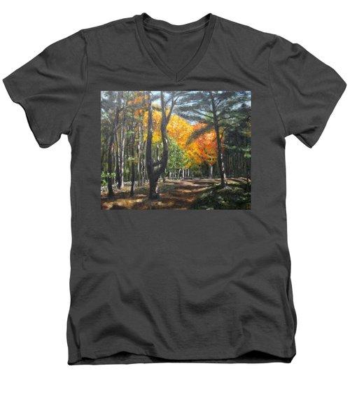 Autumn Walk Men's V-Neck T-Shirt