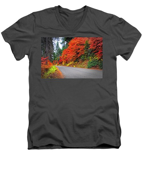Men's V-Neck T-Shirt featuring the photograph Autumn's Glory by Lynn Bauer