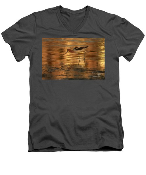 Avocet Gold Men's V-Neck T-Shirt