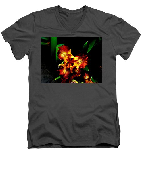 Awesome Iris Men's V-Neck T-Shirt