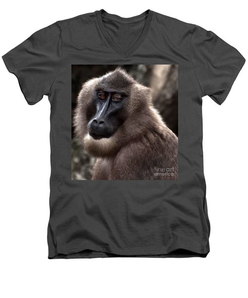 Baboon Men's V-Neck T-Shirt by Loriannah Hespe