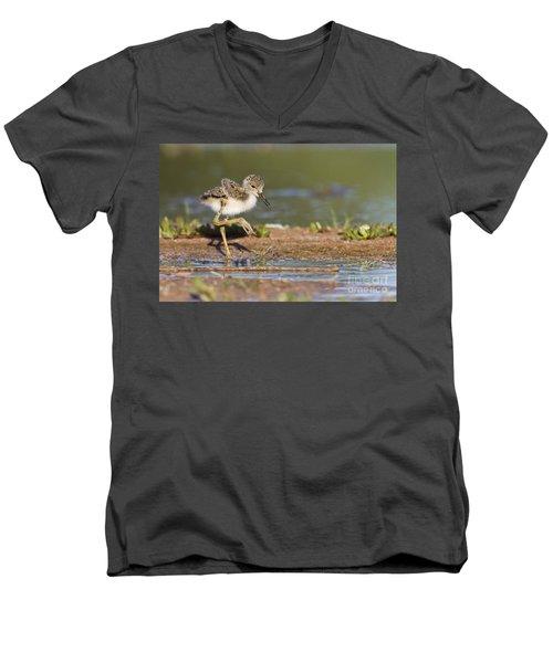 Baby Black-necked Stilt Exploring Men's V-Neck T-Shirt by Bryan Keil