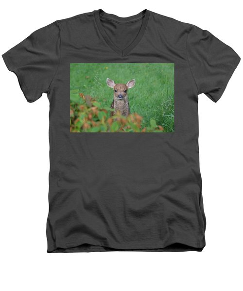 Men's V-Neck T-Shirt featuring the photograph Baby Fawn In Yard by Kym Backland