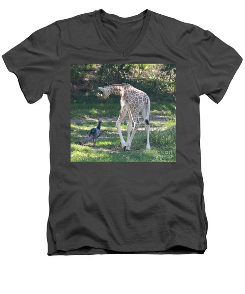 Baby Giraffe And Peacock Out For A Walk Men's V-Neck T-Shirt by John Telfer