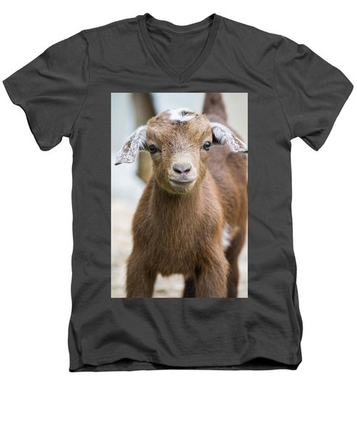 Baby Goat Men's V-Neck T-Shirt by Shelby  Young