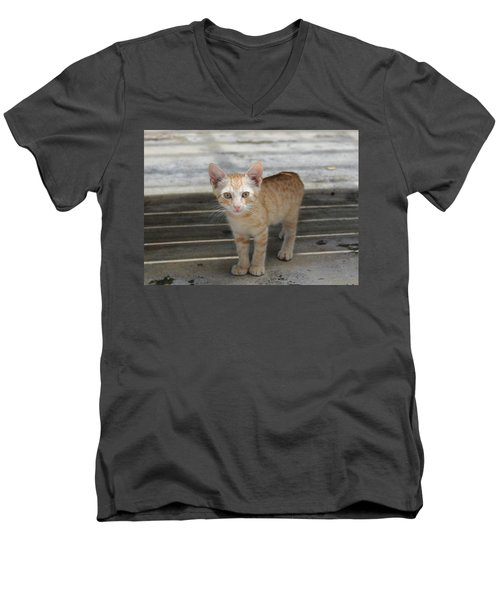 Baby Kitty Men's V-Neck T-Shirt