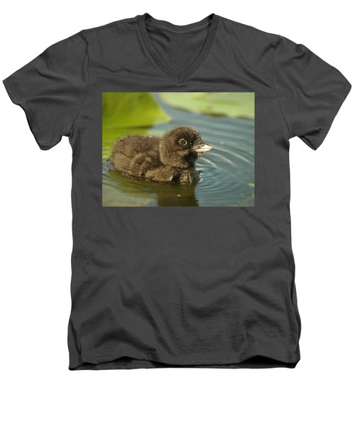 Men's V-Neck T-Shirt featuring the photograph Baby Loon by James Peterson