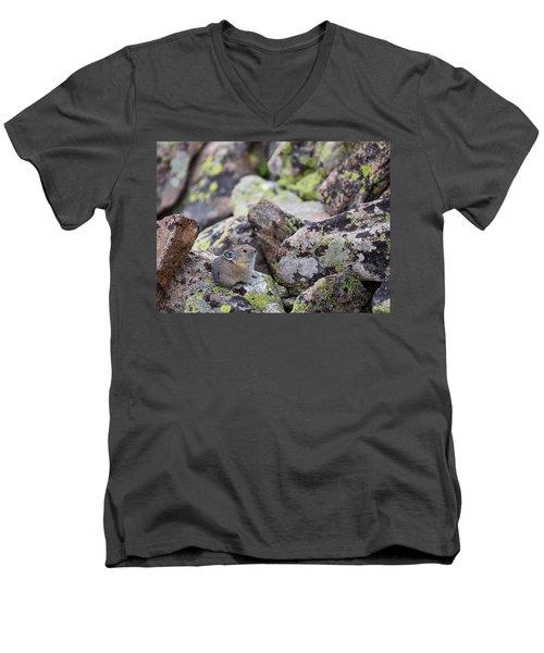 Baby Pika Men's V-Neck T-Shirt