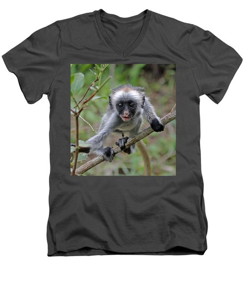 Baby Red Colobus Monkey Men's V-Neck T-Shirt