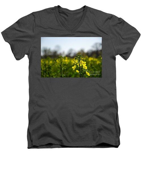 Backlit Canola Flower Men's V-Neck T-Shirt by Kennerth and Birgitta Kullman