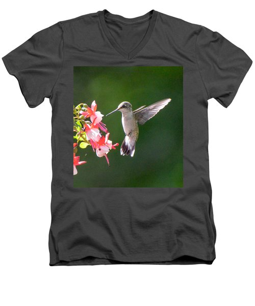 Backlit Fuchsia And Hummer Men's V-Neck T-Shirt by Amy Porter