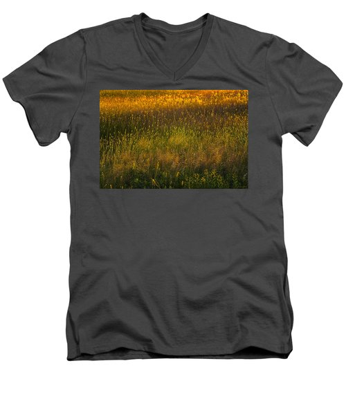 Men's V-Neck T-Shirt featuring the photograph Backlit Meadow Grasses by Marty Saccone