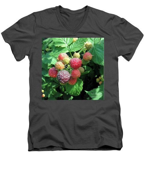 Men's V-Neck T-Shirt featuring the photograph Fruit- Black Raspberries - Luther Fine Art by Luther Fine Art