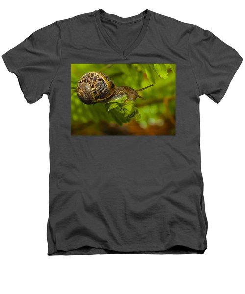 Balance Is Everything Men's V-Neck T-Shirt
