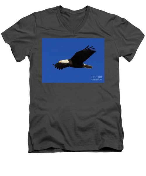 Men's V-Neck T-Shirt featuring the photograph Bald Eagle Lock 14 by Paula Guttilla