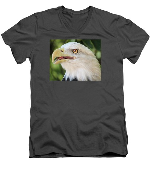 Men's V-Neck T-Shirt featuring the photograph American Bald Eagle Portrait - Bright Eye by Patti Deters