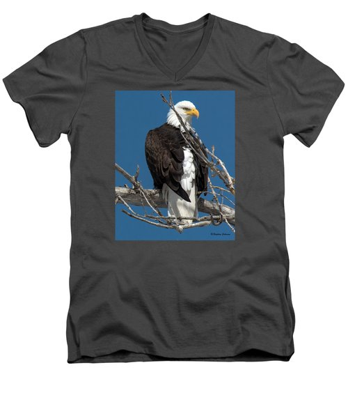 Men's V-Neck T-Shirt featuring the photograph Bald Eagle Putting On The Ritz by Stephen  Johnson