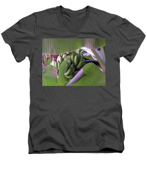 Banana Leaf Curtain Men's V-Neck T-Shirt