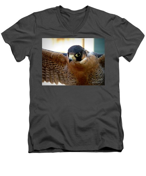 Barbary Falcon Wings Stretched Men's V-Neck T-Shirt by Lainie Wrightson