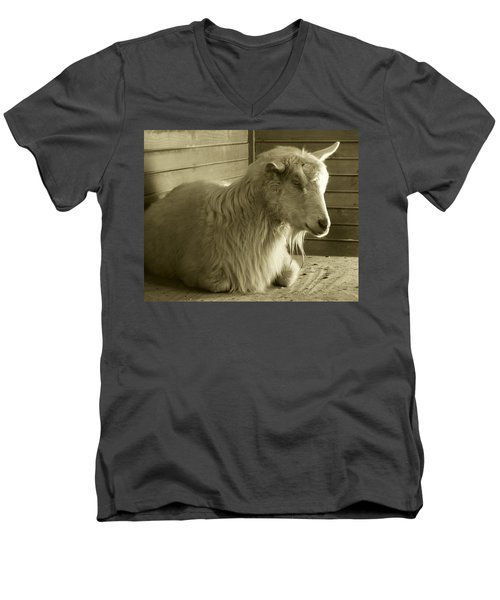 Barn Life Men's V-Neck T-Shirt