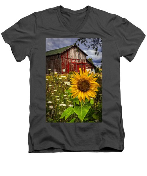 Barn Meadow Flowers Men's V-Neck T-Shirt