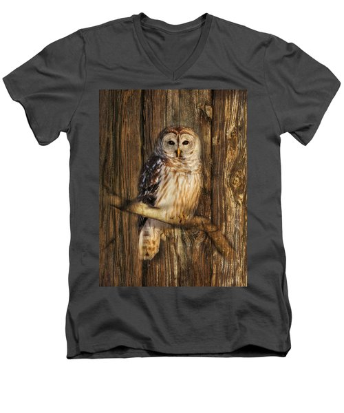 Barred Owl 1 Men's V-Neck T-Shirt