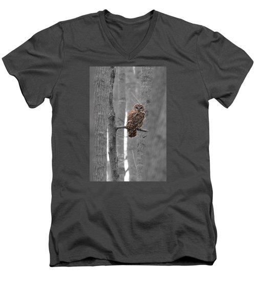 Barred Owl In Winter Woods #1 Men's V-Neck T-Shirt by Paul Rebmann