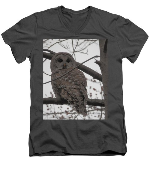 Men's V-Neck T-Shirt featuring the photograph Barred Owl Perched by Emmy Marie Vickers