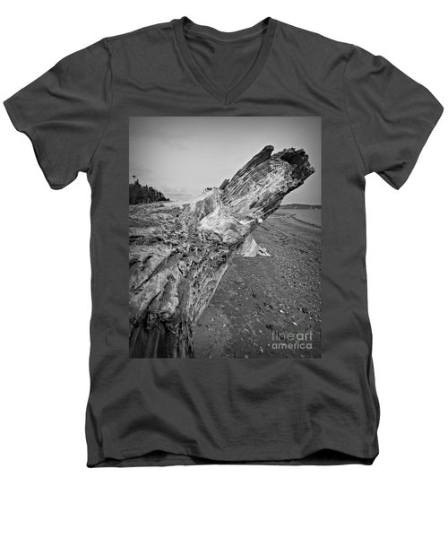 Beach Driftwood View Men's V-Neck T-Shirt