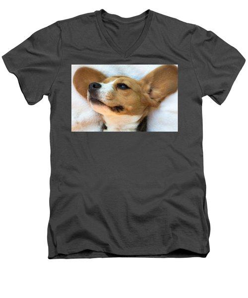 Beagles Dreams Men's V-Neck T-Shirt