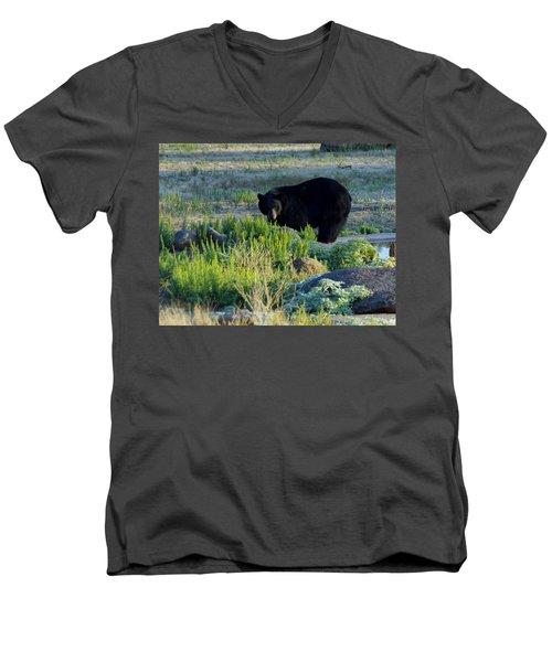Bear 3 Men's V-Neck T-Shirt
