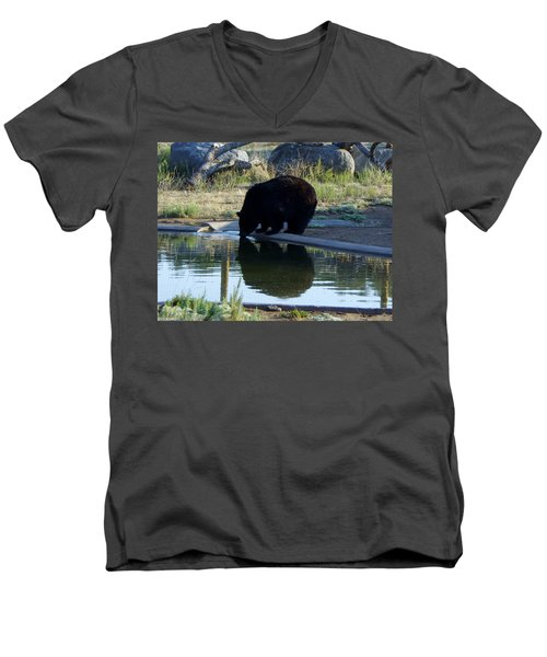 Bear 4 Men's V-Neck T-Shirt