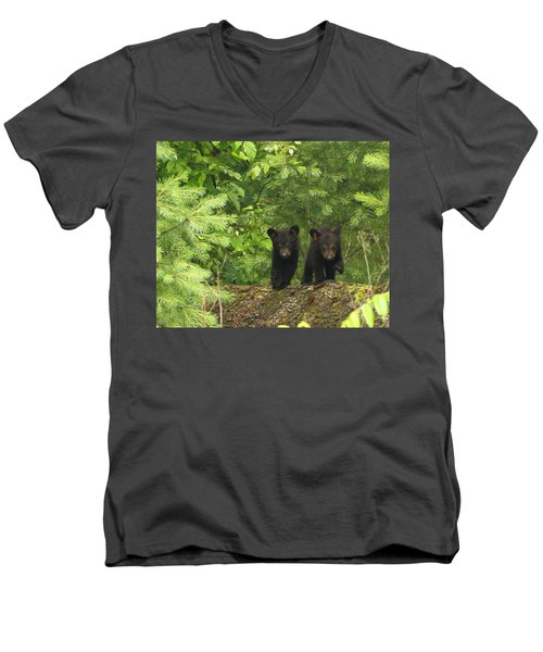 Men's V-Neck T-Shirt featuring the photograph Bear Buddies by Coby Cooper