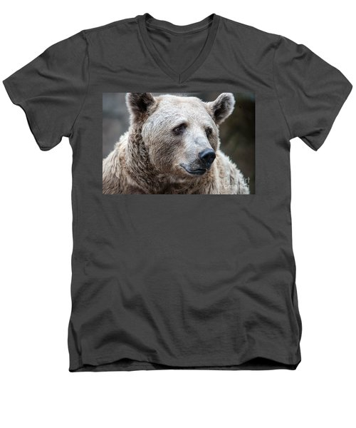 Bear Necessities Men's V-Neck T-Shirt