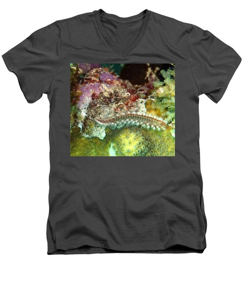 Bearded Fireworm On Rainbow Coral Men's V-Neck T-Shirt by Amy McDaniel