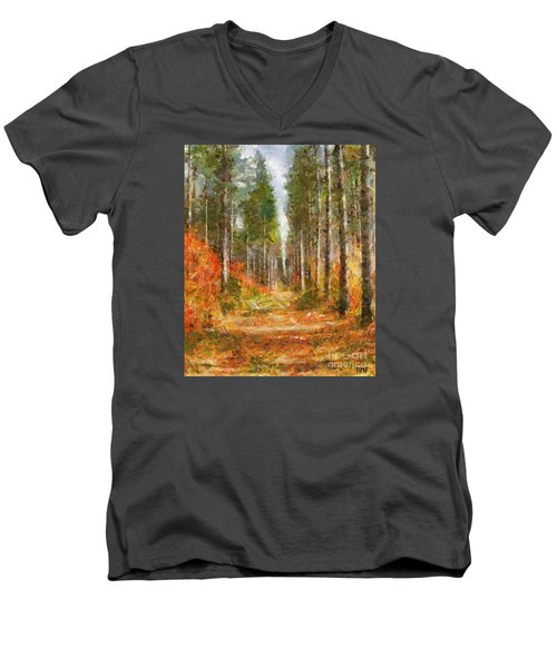 Beautiful Autumn Men's V-Neck T-Shirt