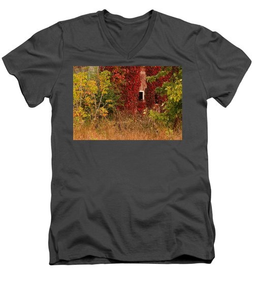 Beautiful Barn Men's V-Neck T-Shirt