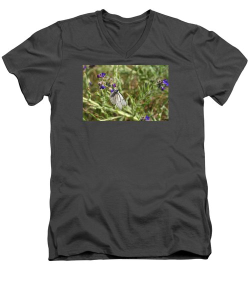 Men's V-Neck T-Shirt featuring the photograph Beautiful Butterfly In Vegetation by Dreamland Media