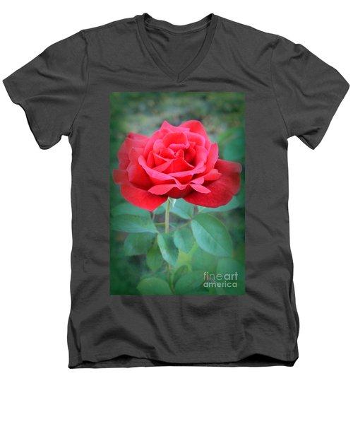 Beautiful Morning Rose  Men's V-Neck T-Shirt