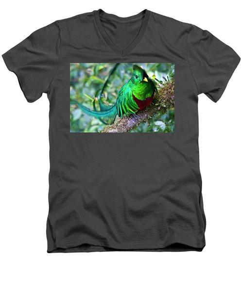 Beautiful Quetzal 4 Men's V-Neck T-Shirt by Heiko Koehrer-Wagner