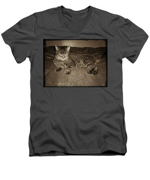 Men's V-Neck T-Shirt featuring the photograph Beautiful Tabby Cat by Absinthe Art By Michelle LeAnn Scott