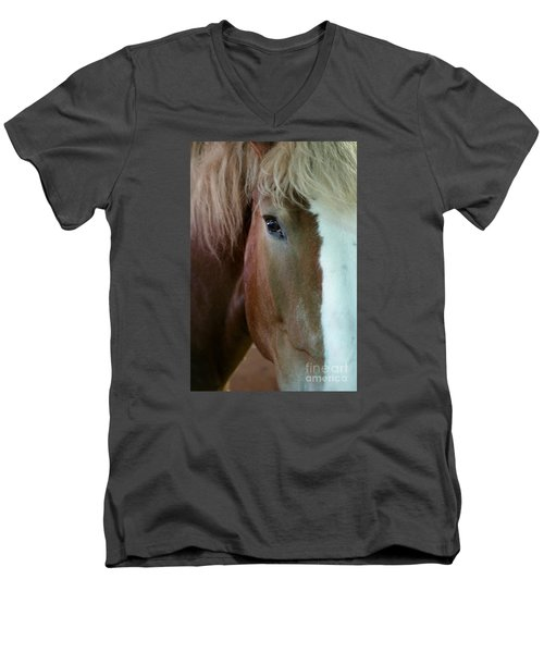 Men's V-Neck T-Shirt featuring the photograph Beautiful Within Him Was The Spirit - 2 by Linda Shafer