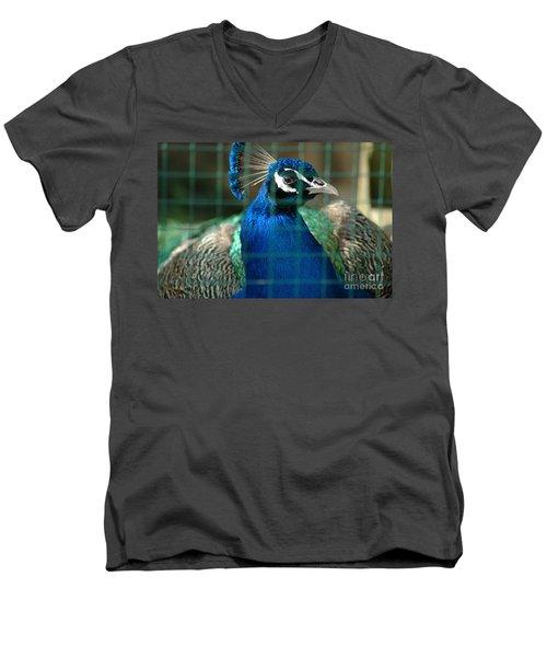 Beauty In Captivity Men's V-Neck T-Shirt by Randi Grace Nilsberg