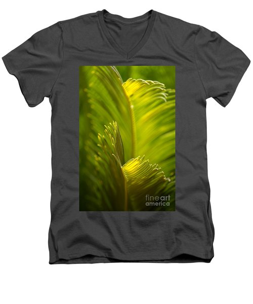 Beauty In The Sunlight Men's V-Neck T-Shirt