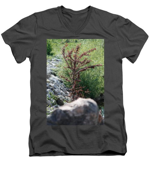 Beauty Is Everywhere Men's V-Neck T-Shirt