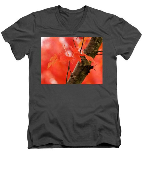 Beauty Of Red Men's V-Neck T-Shirt