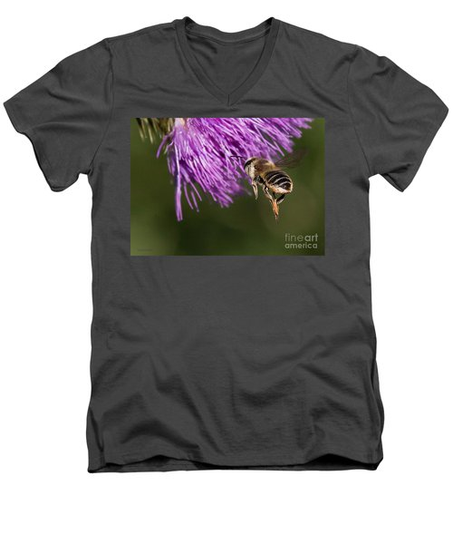 Bee Butt Men's V-Neck T-Shirt