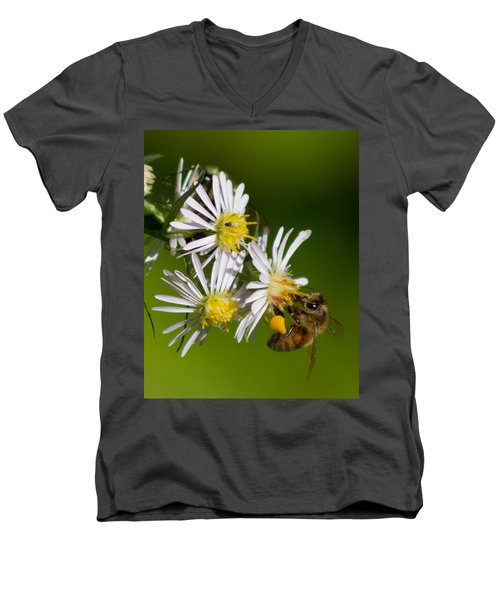 Bee Harvest Men's V-Neck T-Shirt